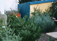 2016_weihnachtsmarkt_leppersdorf_16