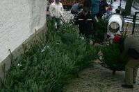 weihnachtsmarkt_leppersdorf_10